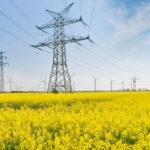 Odszkodowanie za słupy energetyczne